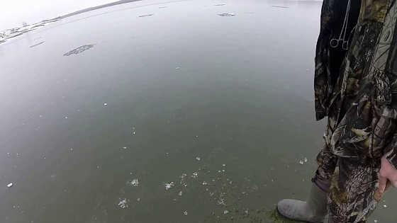Ловля толстолобика со льда видео