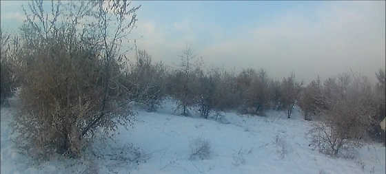 Моменты зимней охоты видео