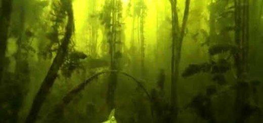 Видео подводной охоты на щуку в водорослях
