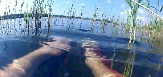 Подводная охота на карасей на озере видео