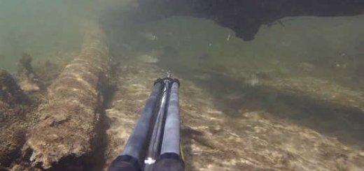 Подводная охота на малых реках видео