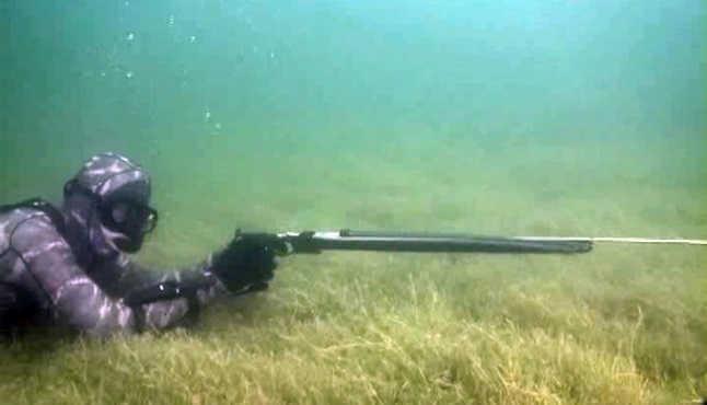 Видео подводной охоты на водохранилище