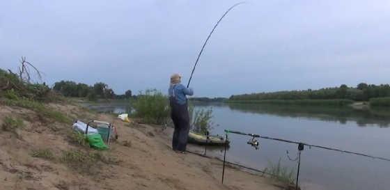 Ловля карпа осенью на Ахтубе видео