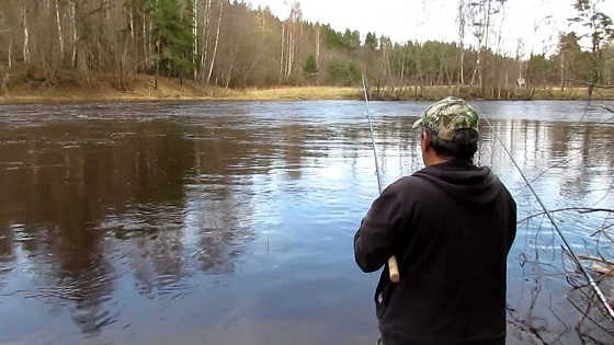 Ловля плотвы ранней весной видео