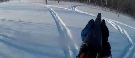 Неудача на зимней охоте на зайца видео
