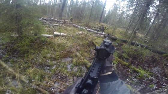 Охота на лося с западно-сибирскими лайками видео