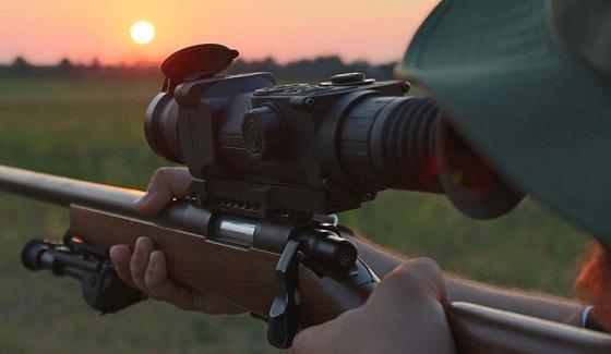 Охота с ночным прицелом видео