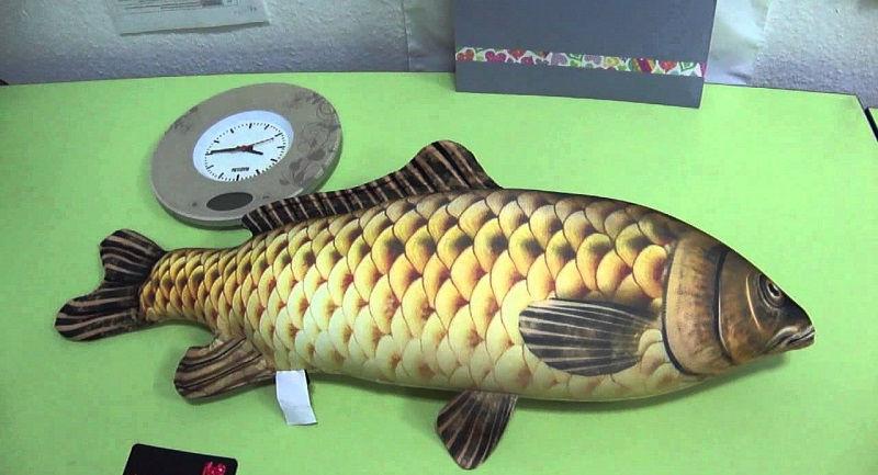 Рыба-подушка