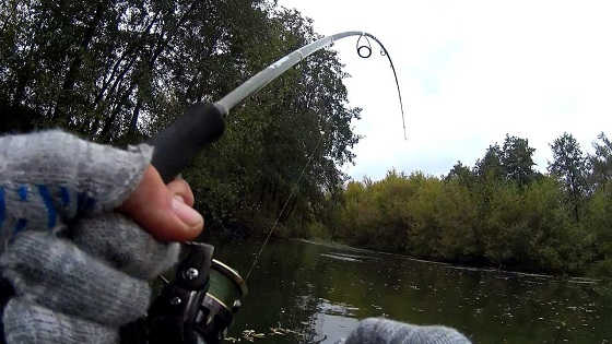 Рыбалка на спиннинг на маленькой речке видео