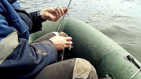 Ловля Астраханской воблы видео