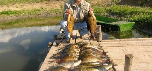 Ловля рыбы в Беларуси