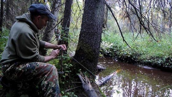 Осенняя ловля налима на ручье видео