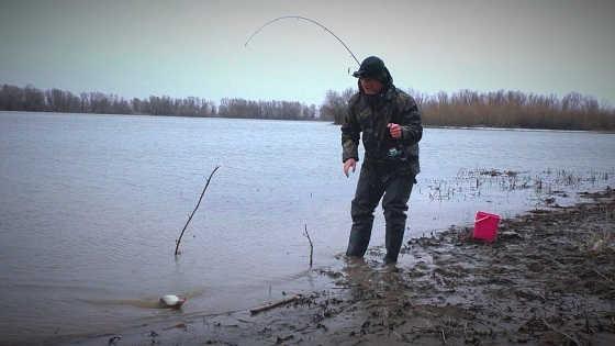 Рыбалка на открытой воде весной видео