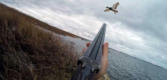 Стрельба влет по утке видео