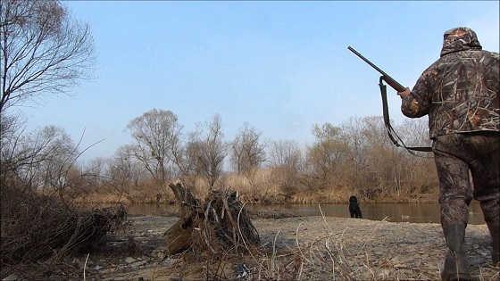 Весенняя охота на уток в Приморье видео