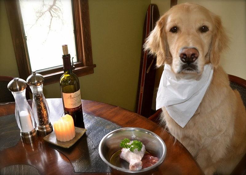 Лучший корм для собаки