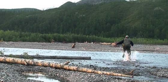 Медведь и рыбаки видео