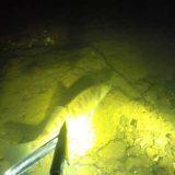 Ночная подводная охота на Волге видео