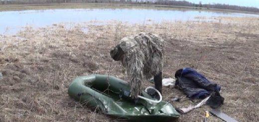 Охота на утку на разливах видео