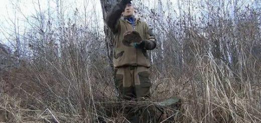 Как приманить вальдшнепа на охоте весной видео