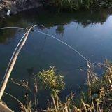 Рыбалка на паука в начале апреля видео
