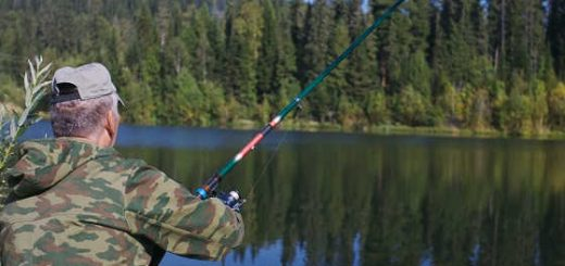 Летняя рыбалка на озере в лесу видео
