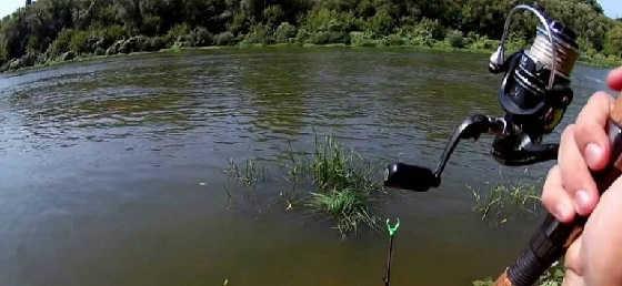 Летняя рыбалка на Дону видео