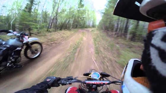 Встреча мотоциклистов с медведями видео