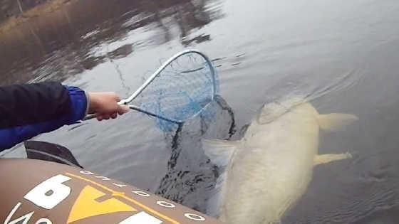 Необычные случаи на рыбалке видео