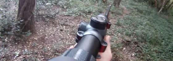 Охота на кабана в июне видео