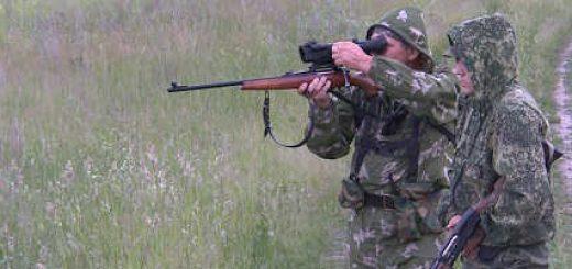 Охота на косулю с подхода в Беларуси видео