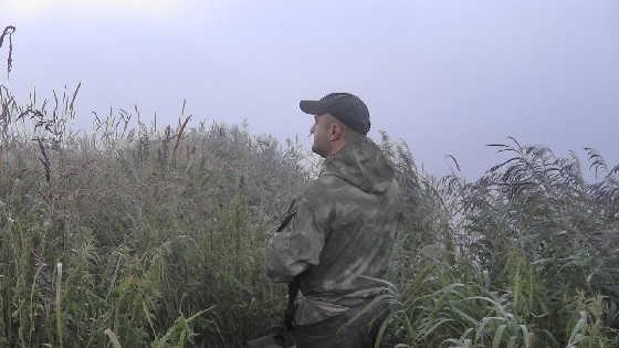 Открытие охоты в летне-осенний сезон на уток видео
