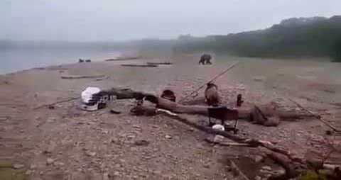 Рыбаки застрелили медведя видео