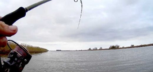 Рыбалка на спиннинг - село Бакланье - видео