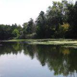 Рыбалка с ночёвкой на реке Северский донец видео