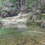 Рыбалка в Японии на горной реке видео