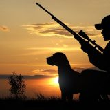 Сезоны охоты