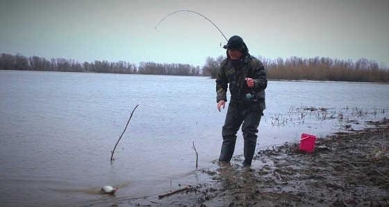 Весенняя рыбалка на донку закидушку видео