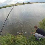Июльская рыбалка на карпа видео