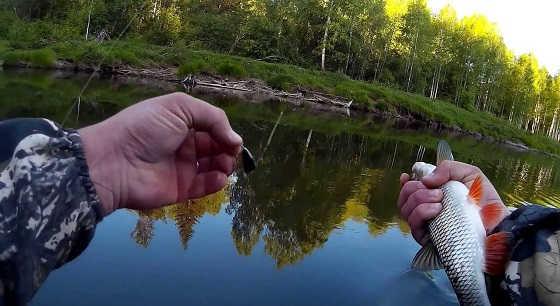 Июльская рыбалка на малой речке видео