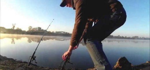 Июльская рыбалка на Северском Донце видео