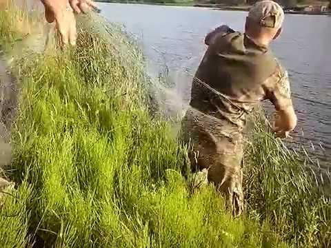 Июльская рыбалка сеткой видео