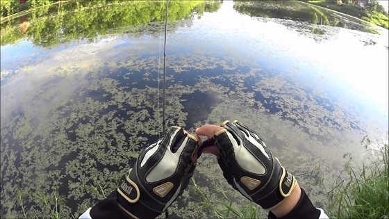 Ловля щуки на неогруженную резину видео