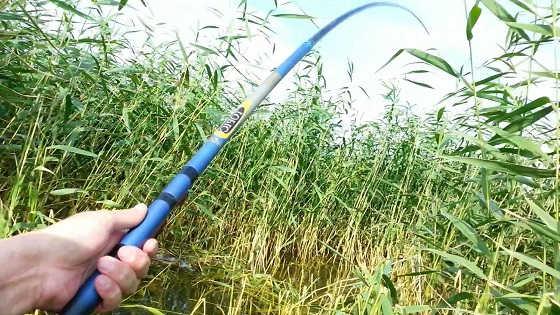 Ловля карася в траве видео
