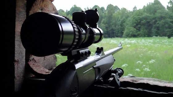 Охота на кабана в июле видео