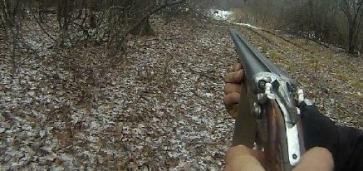 Охота на козу и кабана видео