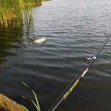 Отличная июльская рыбалка видео