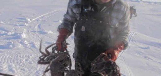 Подледный лов краба на Сахалине видео