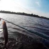 Рыбалка на перемет видео