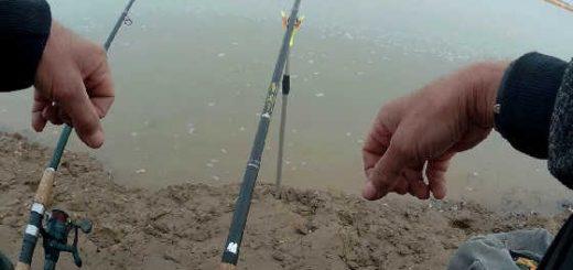 Рыбалка на реке Чу видео